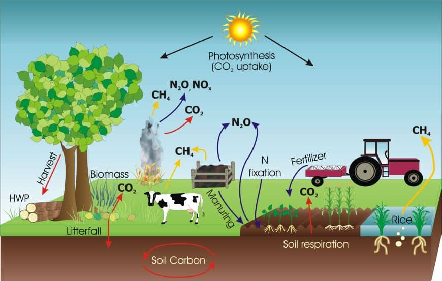 New Agriculture Strategies to Reduce Greenhouse Gas